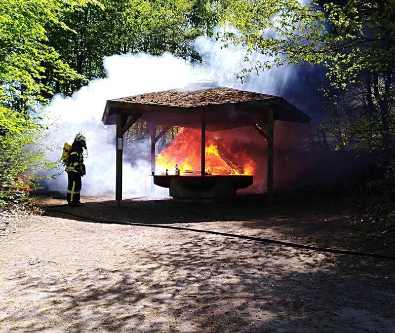 Feuer im Park